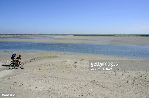 Bike ride on the beach of Le Crotoy at low tide Baie de Somme and Cote d'Opale area Somme department Picardie region France