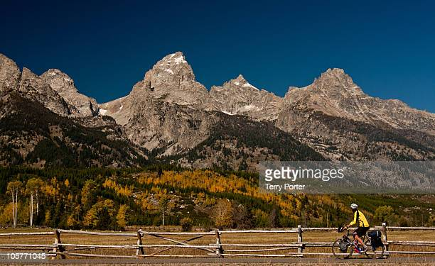 A bike rider slows to take in this gorgeous mountain scene in The Grand Tetons The Aspens are a beautiful gold like the biker's shirt