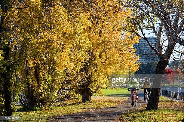 Bike riders on the foreshore of Lake Burley Griffin in Autumn Canberra Australian Capital Territory ACT Australia