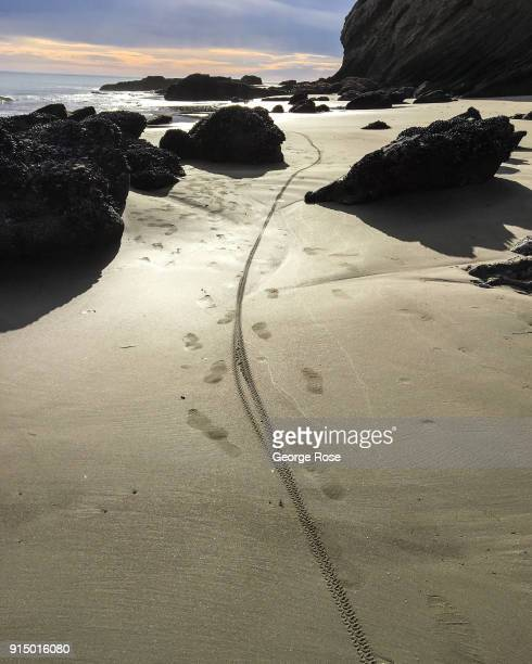 A bike tire mark in the sand at low tide is viewed on January 31 at Gaviota State Beach California Because of its close proximity to Southern...