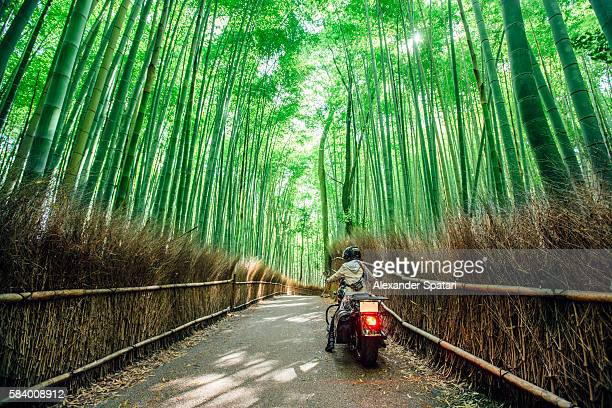 Biker riding through Arashiyama bamboo grove in Kyoto, Japan