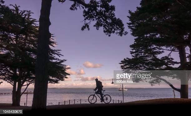 biker silhouette against sea, australia - image stock pictures, royalty-free photos & images