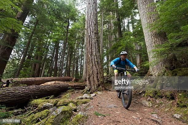 Radfahren in einem unberührten Wald