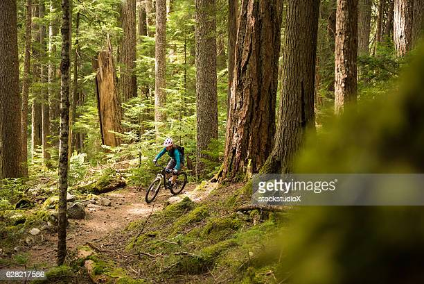 biking in a pristine forest - whistler british columbia stock pictures, royalty-free photos & images