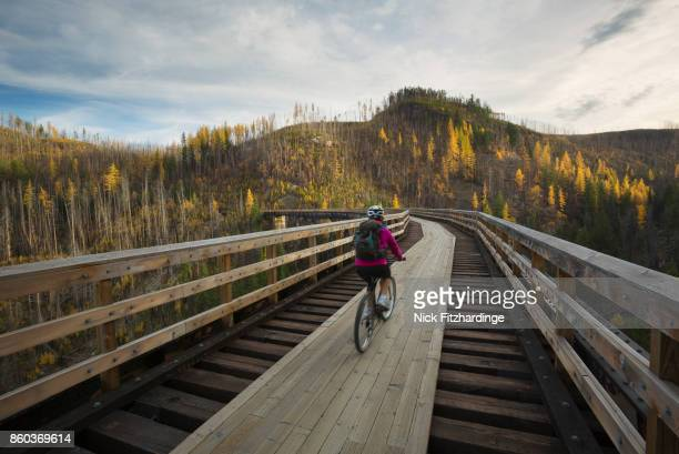 biking over the trestles in myra canyon on the kettle valley railway, british columbia, canada - kelowna stock pictures, royalty-free photos & images
