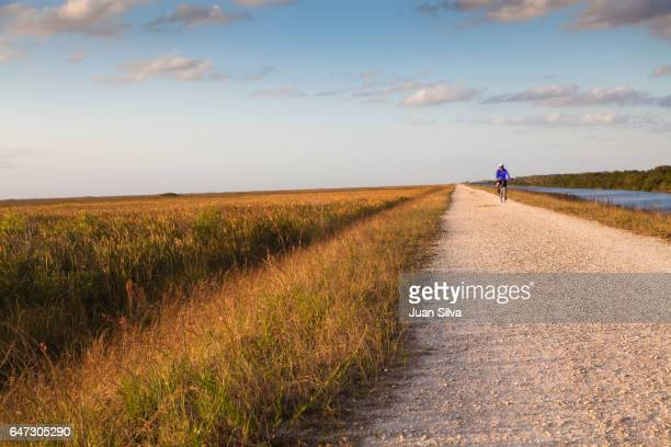 biking - coral springs stock pictures, royalty-free photos & images