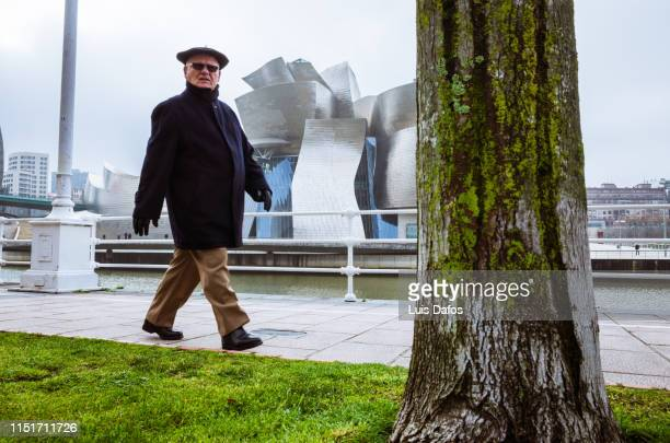 bilbao street scene - dafos stock photos and pictures