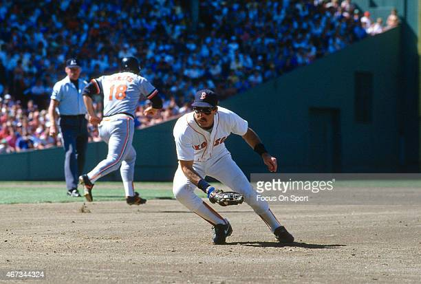 Bill Buckner of the Boston Red Sox field a ground ball against the Baltimore Orioles during an Major League Baseball game circa 1986 at Fenway Park...