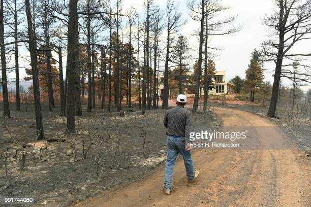 Bill 'Coach' Price walks through burned trees to help rescue three horses in Piney Ridge Ranch on July 4 2018 in La Veta Colorado The horses' owners...