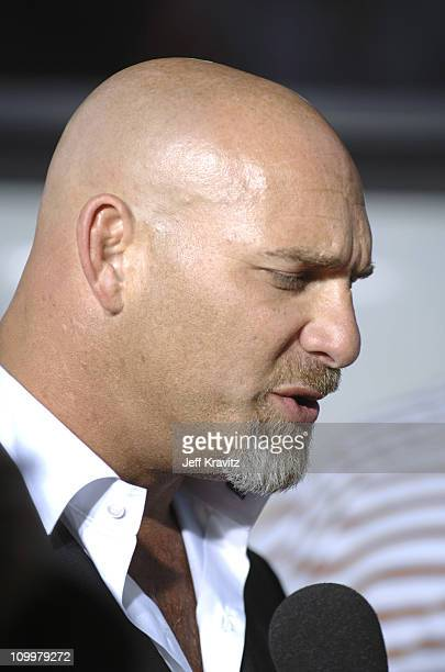 Bill Goldberg during The Longest Yard Los Angeles Premiere Arrivals at Grauman's Chinese Theater in Hollywood California United States