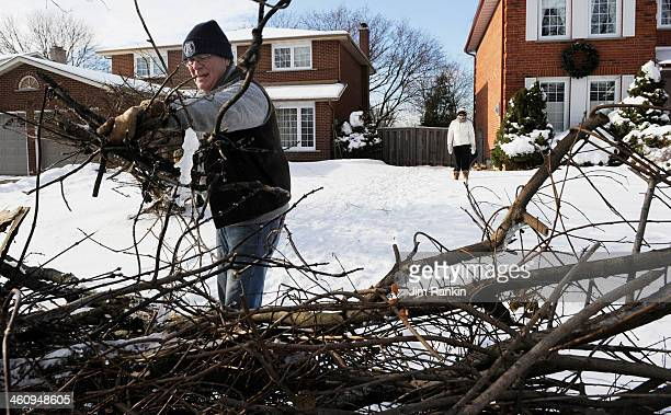 Bill Hollett carries tree limbs from a damaged backyard maple to the curb for eventual pick up by the city of Markham The trees along Markham's Major...