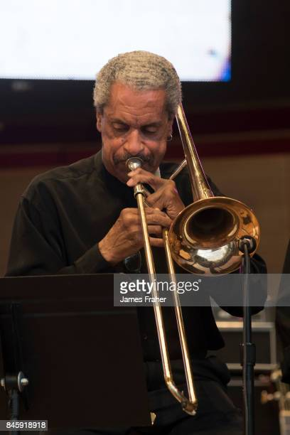 Bill McFarland performs on stage at The Chicago Blues Festival on June 9 2017 in Chicago Illinois