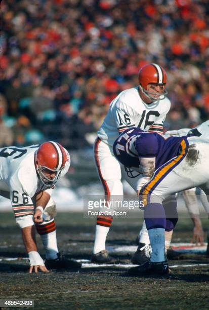 Bill Nelsen of the Cleveland Browns in action against the Minnesota Vikings during an NFL football game November 9 1969 at Metropolitan Stadium in...