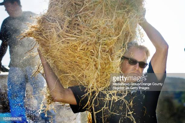 Bill Tarasi helps a friend load his pickup truck with hay as Canyon residents prepare for El Nino Joanne Hubble the unofficial emergency volunteer...