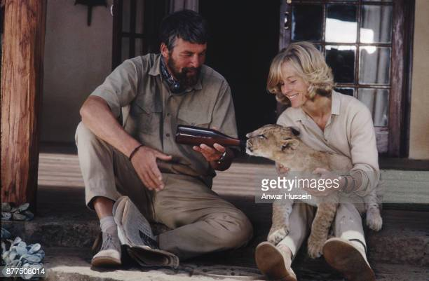 Bill Travers and Virginia McKenna feed a baby lion on the set of the film 'Born Free' based on the book by Joy Adamson about her rescue of Elsa the...