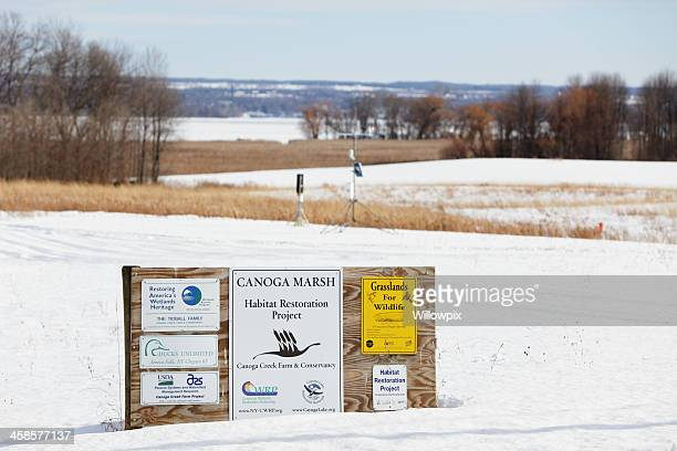 billboard rural canoga marsh habitat restoration project near cayuga lake - finger lakes stock pictures, royalty-free photos & images