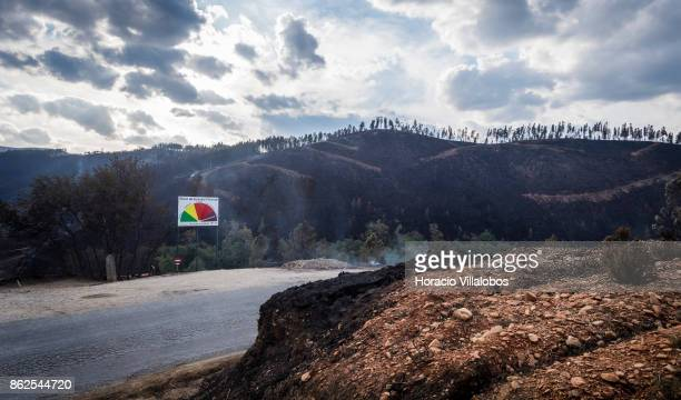 A billboard warning of risk of forest fire with its needle pointing to maximum stands before smoldering ground and a burned house in the town...