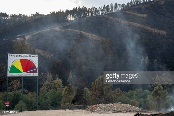 A billboard warning of risk of forest fire with its needle pointing to maximum stands before smoldering hillside in the town outskirts on October 17...