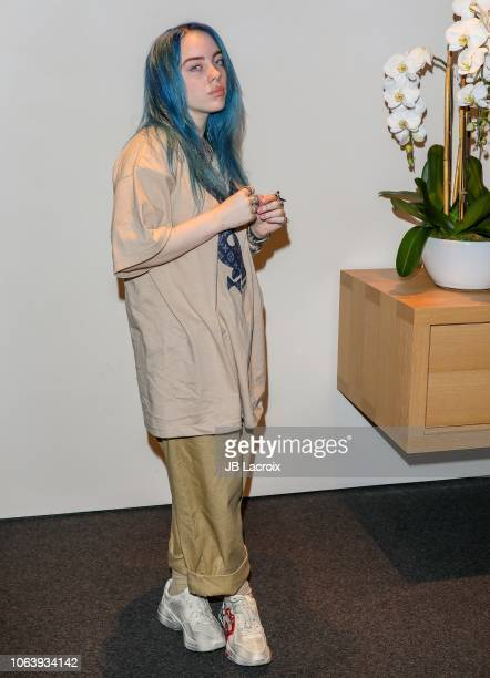 Billie Eilish kicks off Apple Holiday campaign with a performance at the Apple Third Street Promenade on November 20 2018 in Santa Monica California