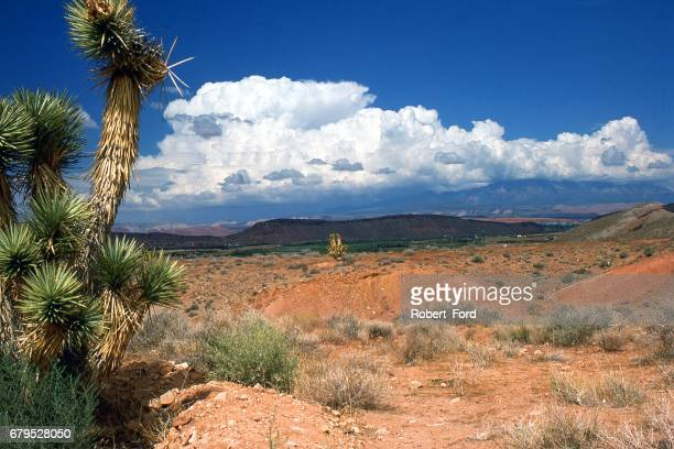 billowing cumulo-nimbus clouds over the big pine mountains behind the city of st george utah - st. george utah stock pictures, royalty-free photos & images
