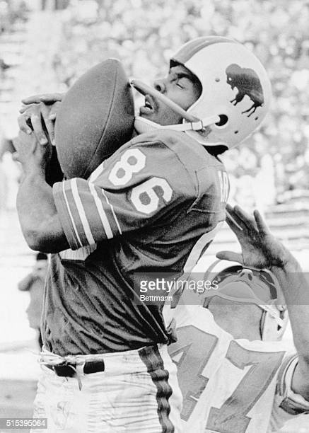 Bill's Marlin Briscoe catches a twelve yard Jack Kemp touchdown pass in the second quarter here Defending for the Miami dolphins was Tom Beier the...