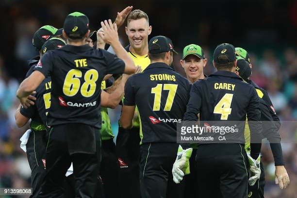 Billy Stanlake of Australia celebrates with team mates after taking the wicket of Colin Munro of New Zealand during game one of the International...