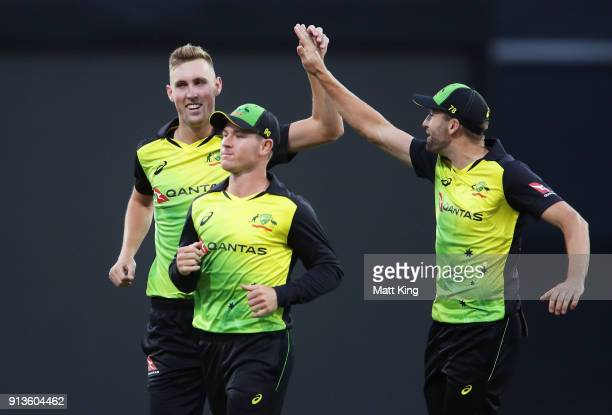Billy Stanlake of Australia celebrates with team mates after taking the wicket of Tom Bruce of New Zealand during game one of the International...
