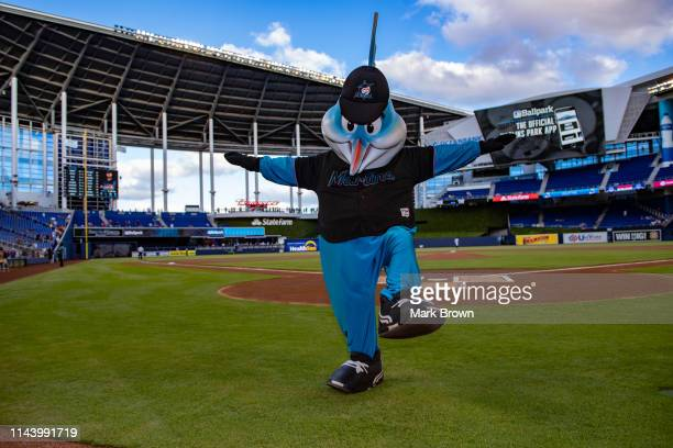 Billy The Marlin performing before the game between the Miami Marlins and the Chicago Cubs at Marlins Park on April 17 2019 in Miami Florida