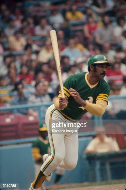 Billy Williams of the Oakland A's watches the flight of the ball he just hit during a game against the Cleveland Indians at Municipal Stadium in...