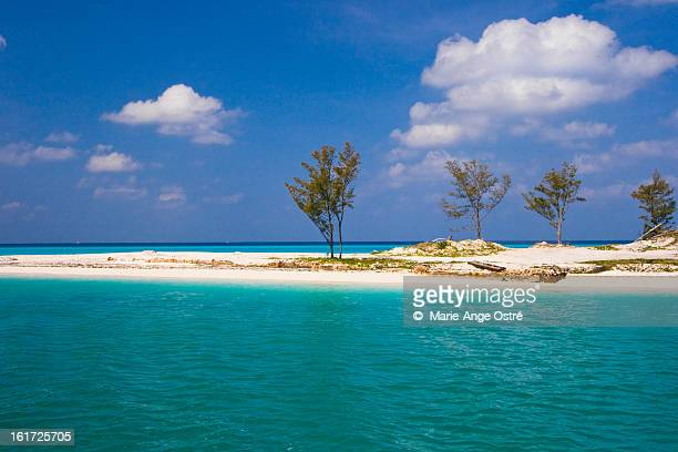 bimini atoll (island and beach), bahamas - bimini stock photos and pictures
