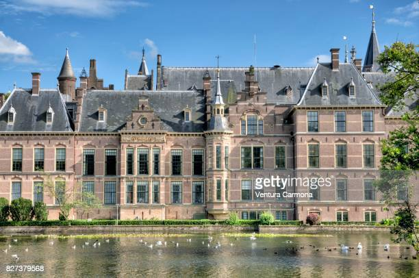 binnenhof with the hofvijver - the hague - binnenhof stock photos and pictures