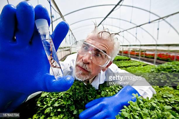 biographie de chimie - jardinier humour photos et images de collection