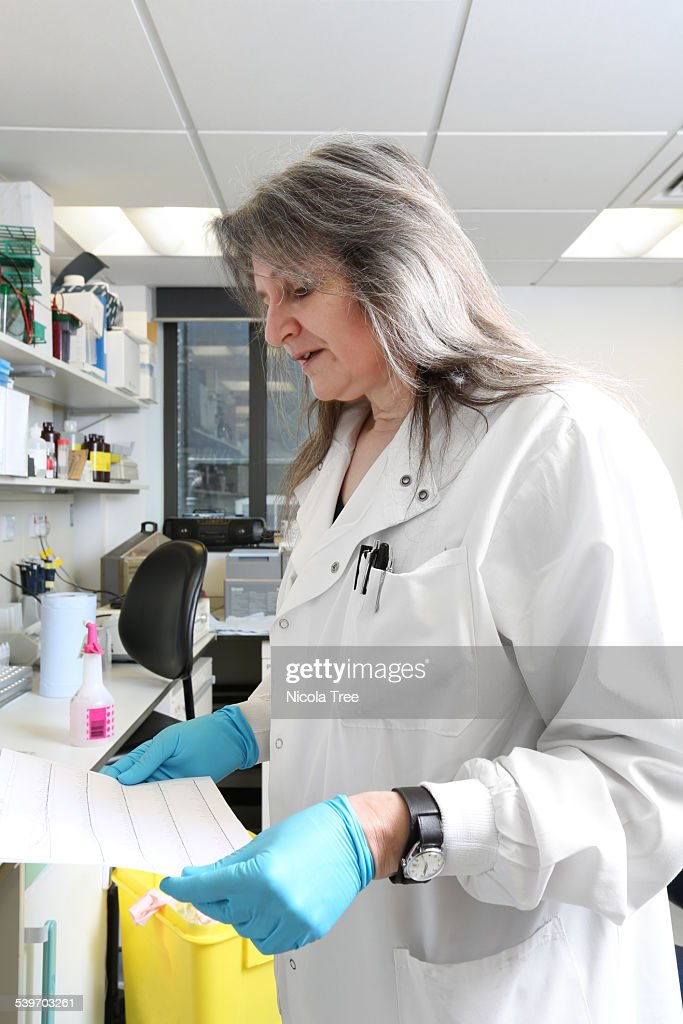 Bio Medical Scientist Analysing Dna Sequencing Stock Photo | Getty ...