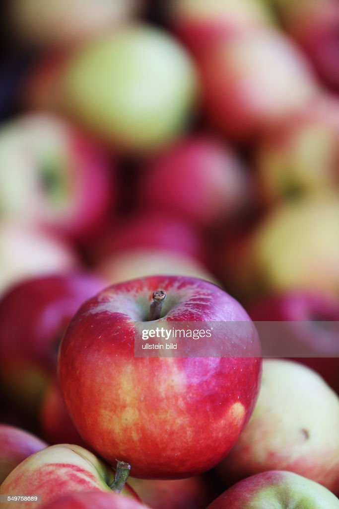 GER, 20121022, Bioaepfel, Elster : News Photo
