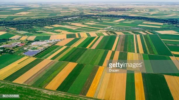 bio-based industry and agriculture - pianura foto e immagini stock