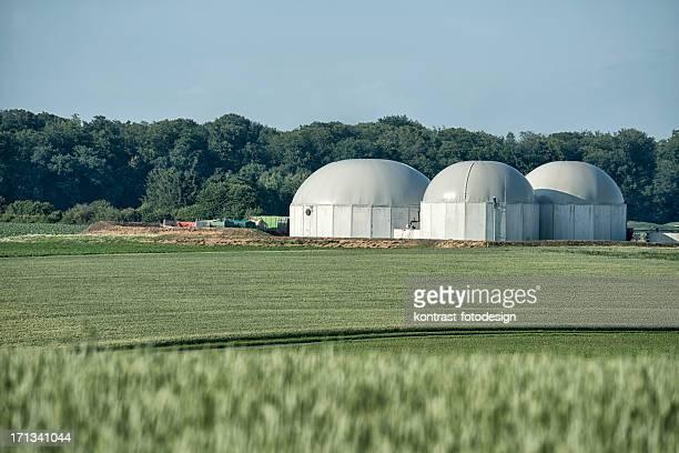 Bioenergie 、バイオマスをエネルギー植物の田園風景