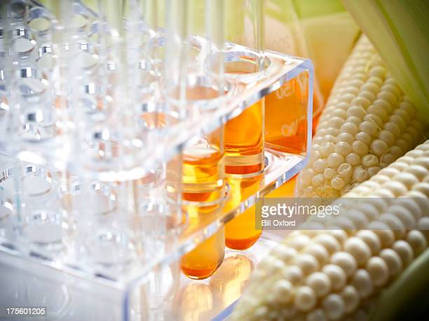 biofuel or corn syrup - fake stock pictures, royalty-free photos & images