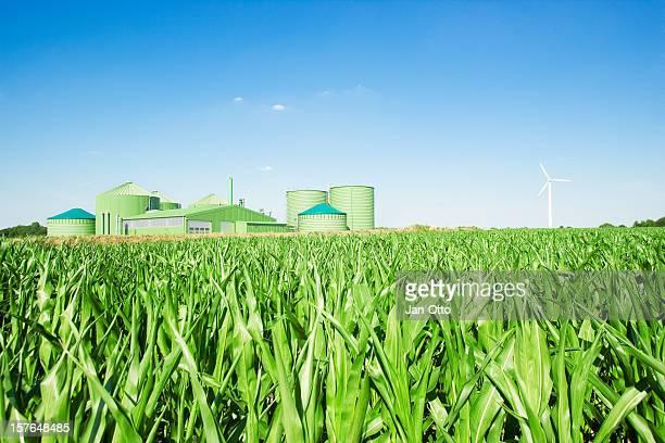 Biogas fahren Energie und Windmühle