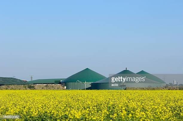Biogas fahren und Vergewaltigung-Feld