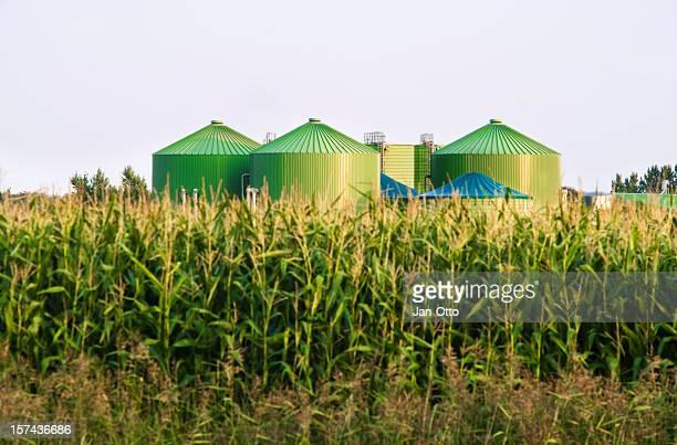 Biogas-industry