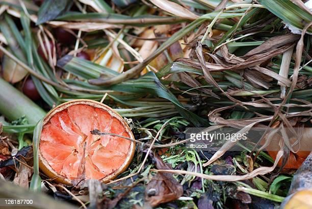 Los residuos orgánicos biológicos