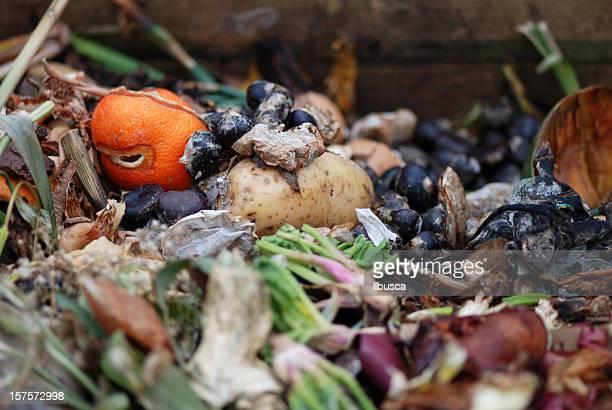 Biologische organischen Abfälle
