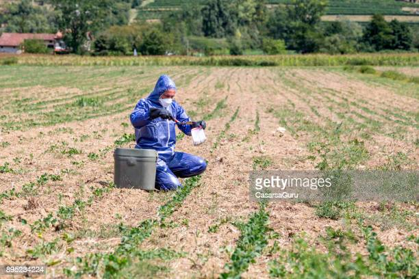 Biologist Researching and Taking Dirt Sample on a Field