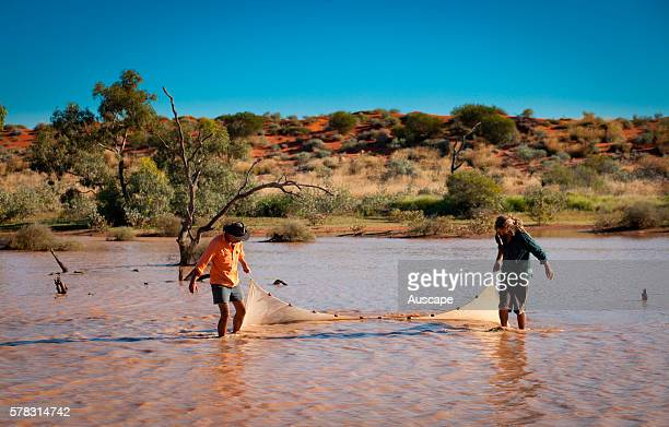 Biologists making a fauna survey of a desert wetland Pulchera Waterhole Ethabuka Reserve northern Simpson Desert Channel Country southwest Queensland...