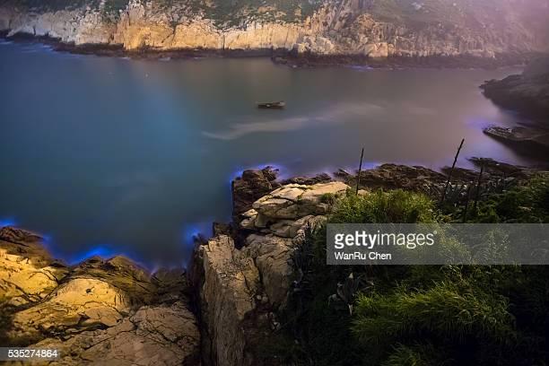 Bioluminescent algae Noctiluca Scintillans