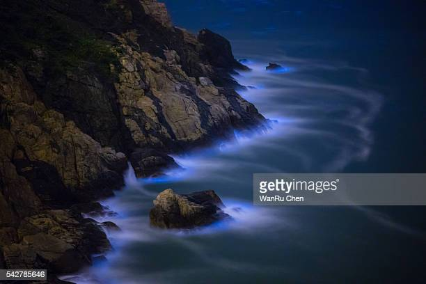 bioluminescent algae noctiluca scintillans - bioluminescence stock pictures, royalty-free photos & images