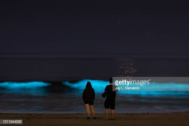 Bioluminescent waves glow off the coast of Hermosa Beach CA Saturday April 25 2020 The phenomenon is associated with a red tide or an algae bloom...