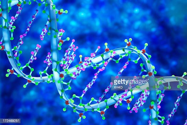 DNA 3D Biomedical Illustration