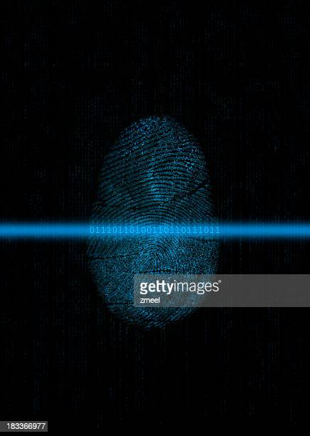 Biometrics: Fingerprint digitizing