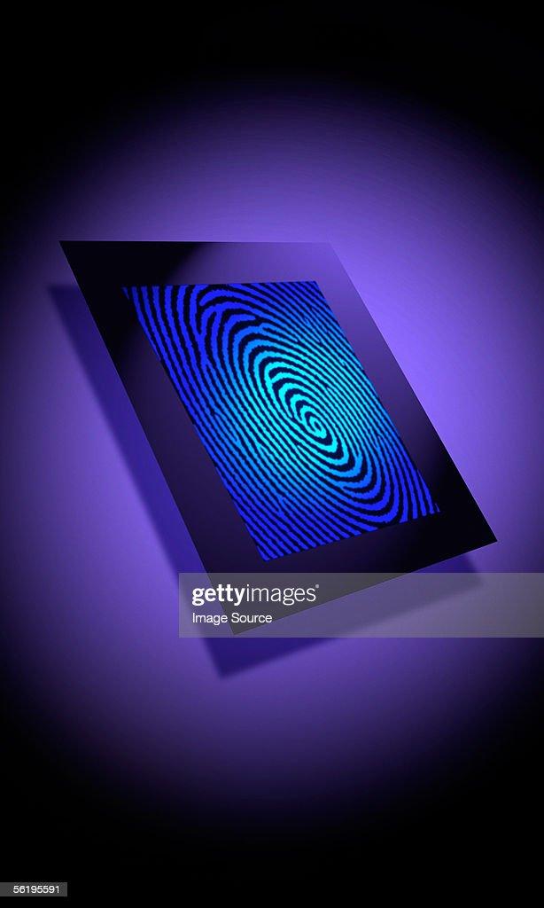 Biometrics : Stock Photo
